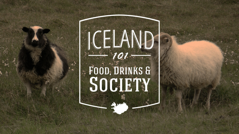 Iceland 101: Food, Drinks & Society